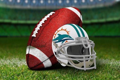 equipo Miami Dolphins